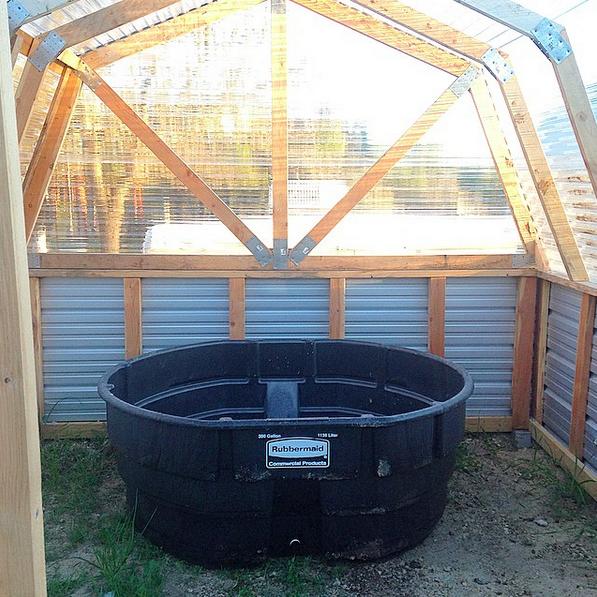 aquaponic-tank